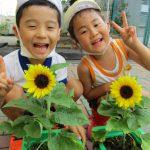 夏のあそびを楽しもう!!
